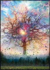 Tree-of-Life-The-Book-of-Life