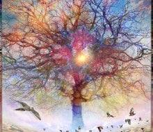 Dessert-of-Forgotten-Tree