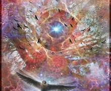 Falcons-Dream