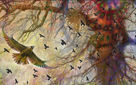 The Tree of Life – Digital collage