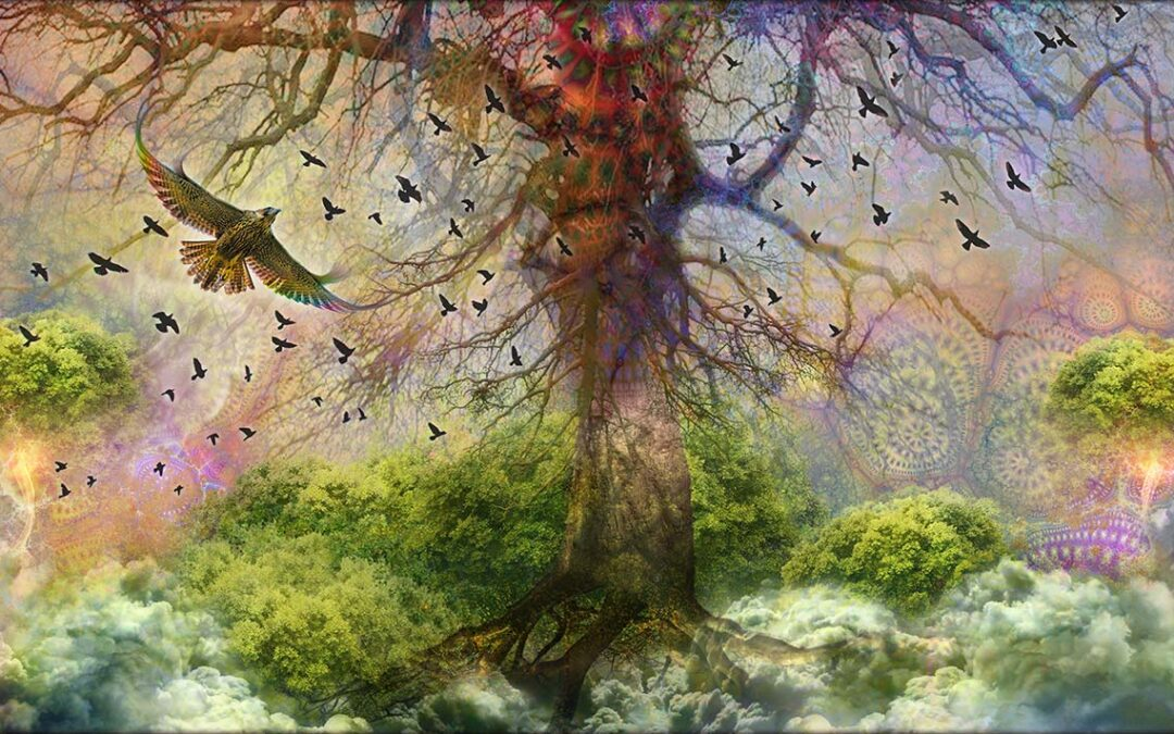 The Tree of Life series